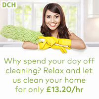 domestic cleaning agency